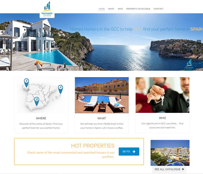 Proyectos internacionales de desarrollos Web